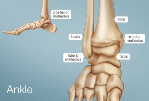 Ankle-Joint-Pain-Treatment-India